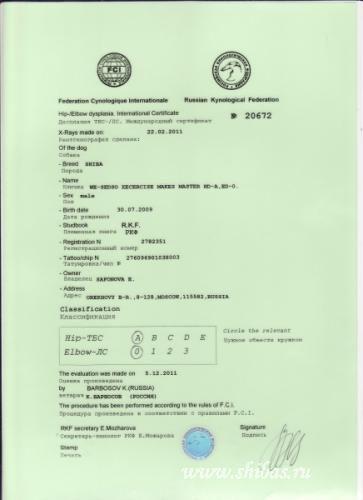 Сертификат на дисплазию